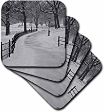 3dRose CST_10293_1 Snow Blizzard in Central Park Manhattan New York City Soft Coasters (Set of 4)