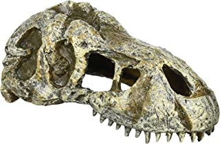 ジェックス エキゾテラ(EXO-TERRA) T-REXスカルS PT2860 爬虫類 隠れ家