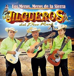 Los Jilgueros DEL Pico Real (Los Meros, Meros De La Sierra) Cdcp-