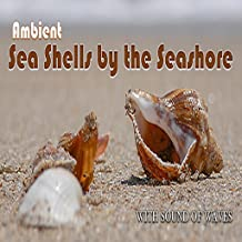 Ambient Sea Shells by the Seashore - with sound of waves