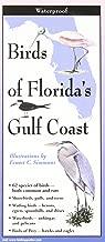 Best florida gulf birds Reviews