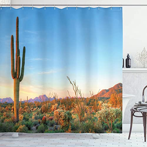Southwest Decor Ideas: Amazon.com