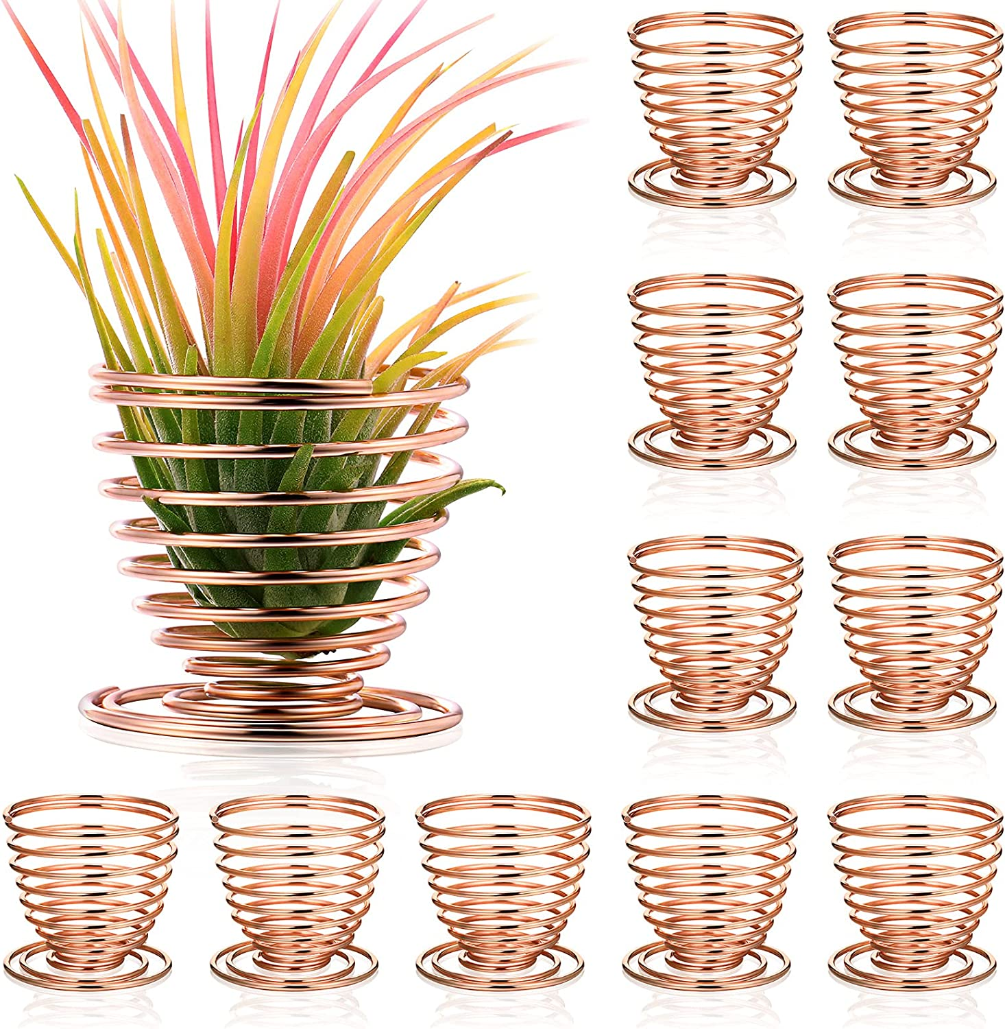 Nuogo Air Plants Holder Airplant Stand Container Tillandsia Stainless Steel Display Racks, Live Tropical Plant Home Office Desktop Decoration (Rose Gold,12 Pieces)