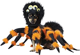 Black/Orange_Spider PUP Dog Costume