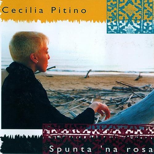 E tu ronna di Cecilia Pitino su Amazon Music - Amazon.it