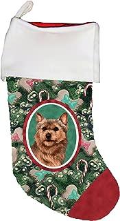 grizzle norwich terrier