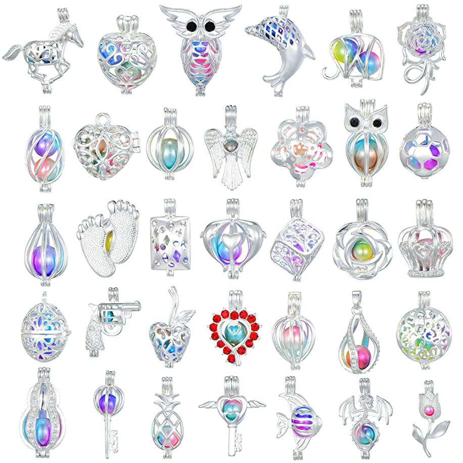 New Arrival Valentine's Day Gift 20 Pcs Bright Silver Cute Wish Pearl Bead Cages Pendant Wholesale - Essential Oil Scent Diffuser Cage Charms for Bracelet Necklace Earrings Jewelry Making (20pcs)