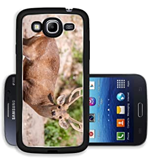 Liili Premium Samsung Galaxy Mega 5.8 Aluminum Case Portrait of whitetail deer fawn at Khao Kheow open Zoo in Thailand Image ID 23426584