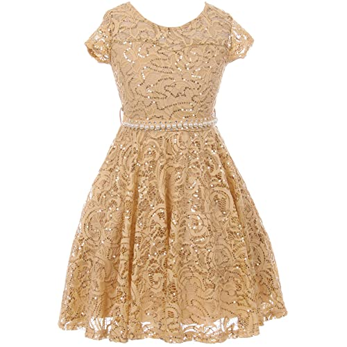 2bdd652f6f8 BNY Corner Cap Sleeve Floral Lace Glitter Pearl Holiday Party Flower Girl  Dress