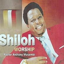 Shiloh Worship