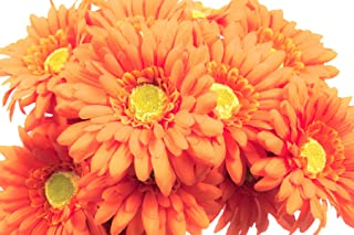CraftMore Orange Colored Gerbera Daisy Stems 14 Inch Set of 12