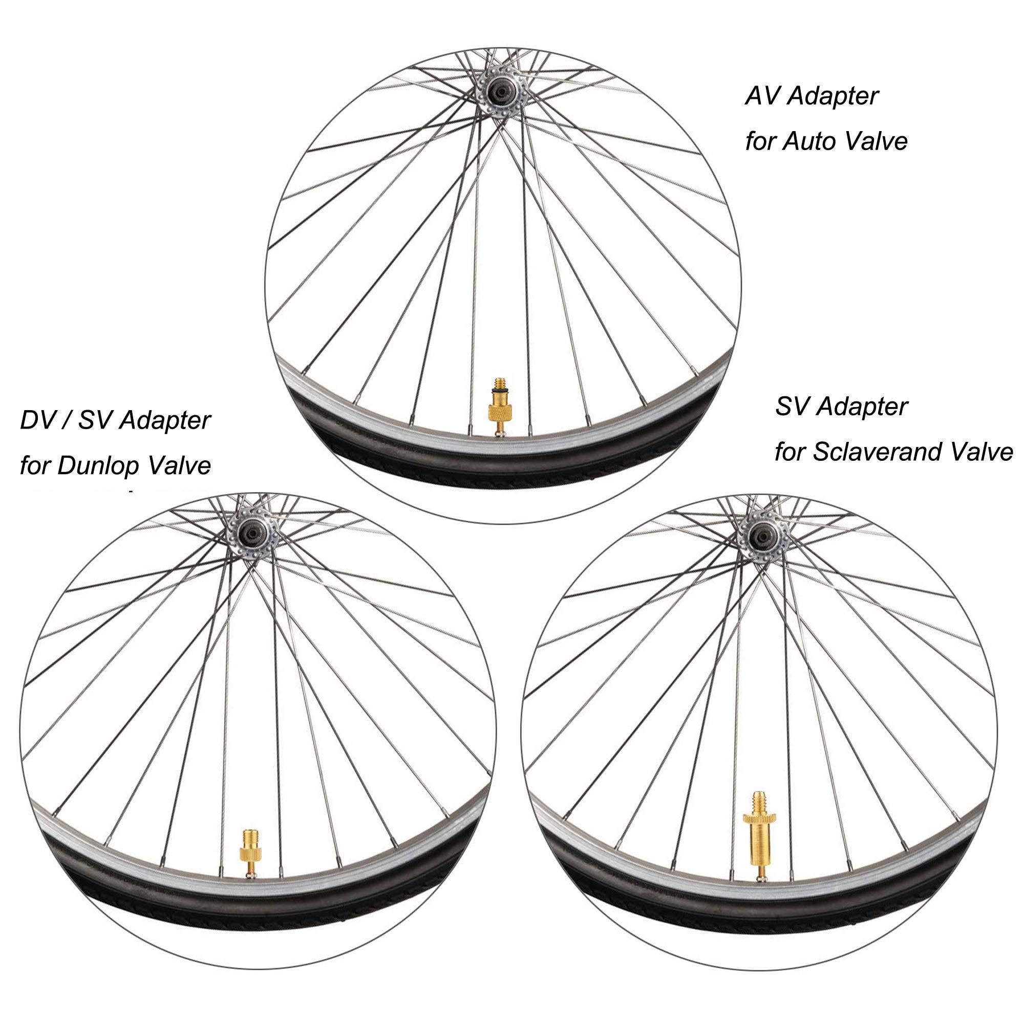 Yizhet 5 Piezas adaptadores para válvulas de Bicicletas válvula ...