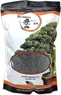 Best lava rocks plants Reviews