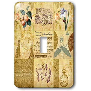 3dRose lsp/_79374/_2 Vintage Gold Collage of Art with Apricots and You Are My Sunshine Double Toggle Switch