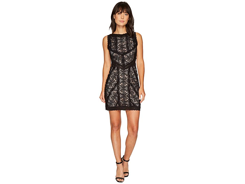 Nicole Miller Queen of the Night Stretch Lace Mini Dress (Black/Nude) Women