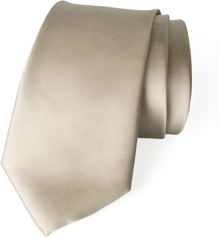 Spring Notion Men's Solid Color Satin Microfiber Tie, Regular and Skinny Width