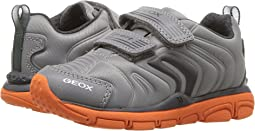 Geox Kids - Jr Torque Boy 7 (Toddler/Little Kid)