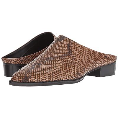 Dolce Vita Aven (Brown Snake Embossed Leather) Women
