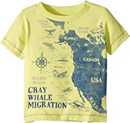 Whale Hello Tee (Infant)