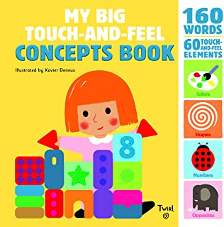 My Big Touch-and-Feel Concepts Book