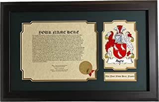 Ayre - Coat of Arms and Last Name History, 14x22 Inches Matted and Framed