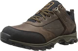 Timberland Men's Mt. Maddsen Low Boot