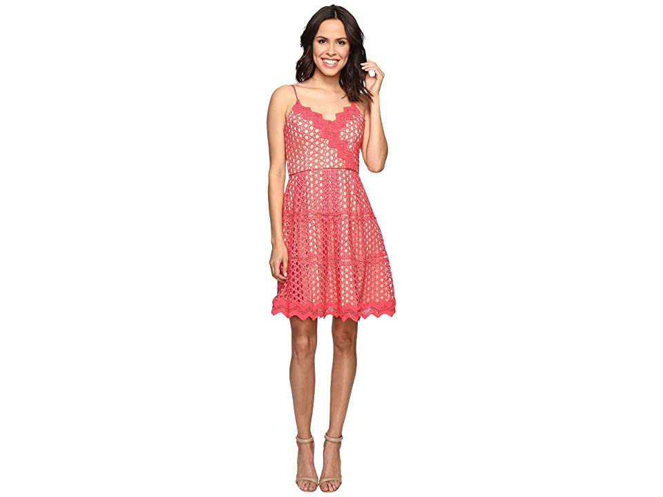 Adelyn Rae Lace Fit and Flare Dress (Coral/Nude) Women