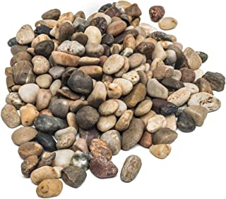 Decorative Stones, Pebbles, River Rocks, 2.5 Cups Approx. Area Coverage of About 9 X 9 inch. Natural Gravel, for Succulent, Tillandsia, Cactus Pot, Terrarium Plants, Vase Fillers, Landscaping.