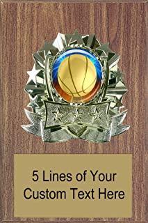 Express Medals 8 x 10 Walnut Finish Basketball Plaque Trophy Award with Custom Engraved Personalized Text