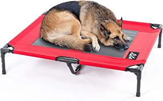 Best cheap elevated dog beds Reviews