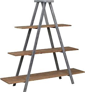"Amazon Brand – Stone & Beam Bryson A-Frame Bookcase Shelf Stand, 70.7""W, Wood and Iron"