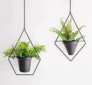 Best metal hanging plant holder Reviews