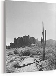 Best black and white cactus print Reviews