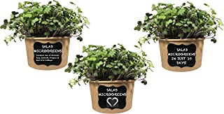 Easy MICROGREENS KIT (Mixed Salad) - Just Add Water & Grow Your own Nutrition in 10 Days. Includes Salad Mix Seed, Fiber Soil, Cups, Chalkboard Labels & Chalk.