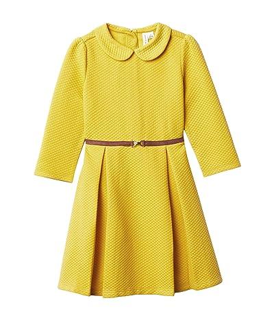Janie and Jack Matelasse Dress (Toddler/Little Kids/Big Kids) (Yellow) Girl