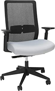HON BASYX Biometryx Commercial-Grade Task Chair, Office Chair, in Grey (BSX155VA19T)