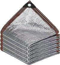 Clear Tarps Luifel Voor Outdoor 3x3 M Zilver, Ventilatie Speeltuin Luifel, Achtertuin schaduw, Met Grommets Voor Pergola C...