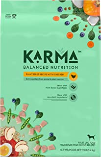 KARMA BALANCED NUTRITION Adult Plant-First Recipe, Natural Dry Dog Food with Chicken, 12 lb. Bag
