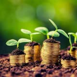 Agricultural ways to make money
