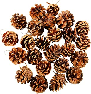 Cooraby 24 Pieces Pine Cones Ornament Natural PineCones With String Pendant Crafts for Gift Tag Tree Party Hanging Decoration (Natural)