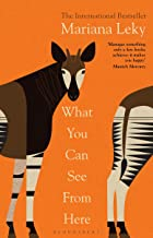 What You Can See From Here: The International Bestseller translated by Tess Lewis