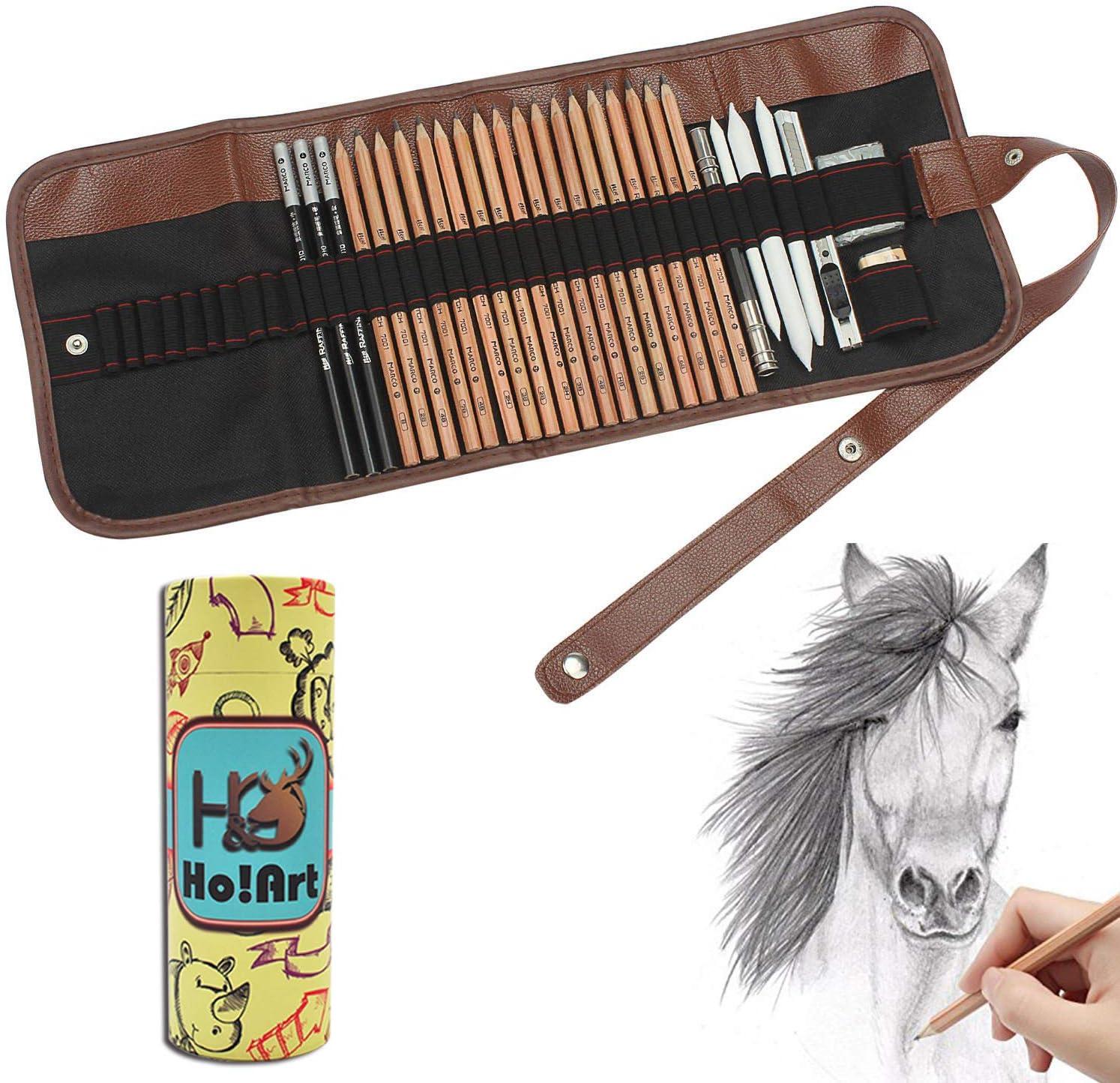 Sketching Pencil Set, Ho! Art 30pcs Sketch Drawing Kit, Graphite Pencils, Charcoal Pencils, Paper Erasable Pen, Erasers, Craft Canvas Bag Perfect Present for Children Teens Adults Artist Beginners : Arts, Crafts & Sewing
