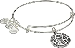Alex and Ani - Color Infusion Godspeed Bangle