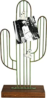 Best cactus picture holder Reviews