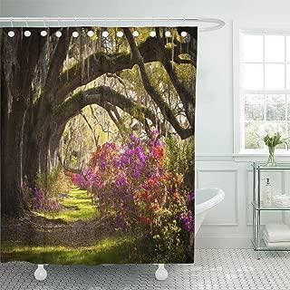 spanish moss curtain