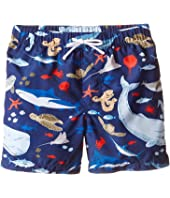 Dolce & Gabbana Kids - Sealife Swimsuit (Toddler/Little Kids)