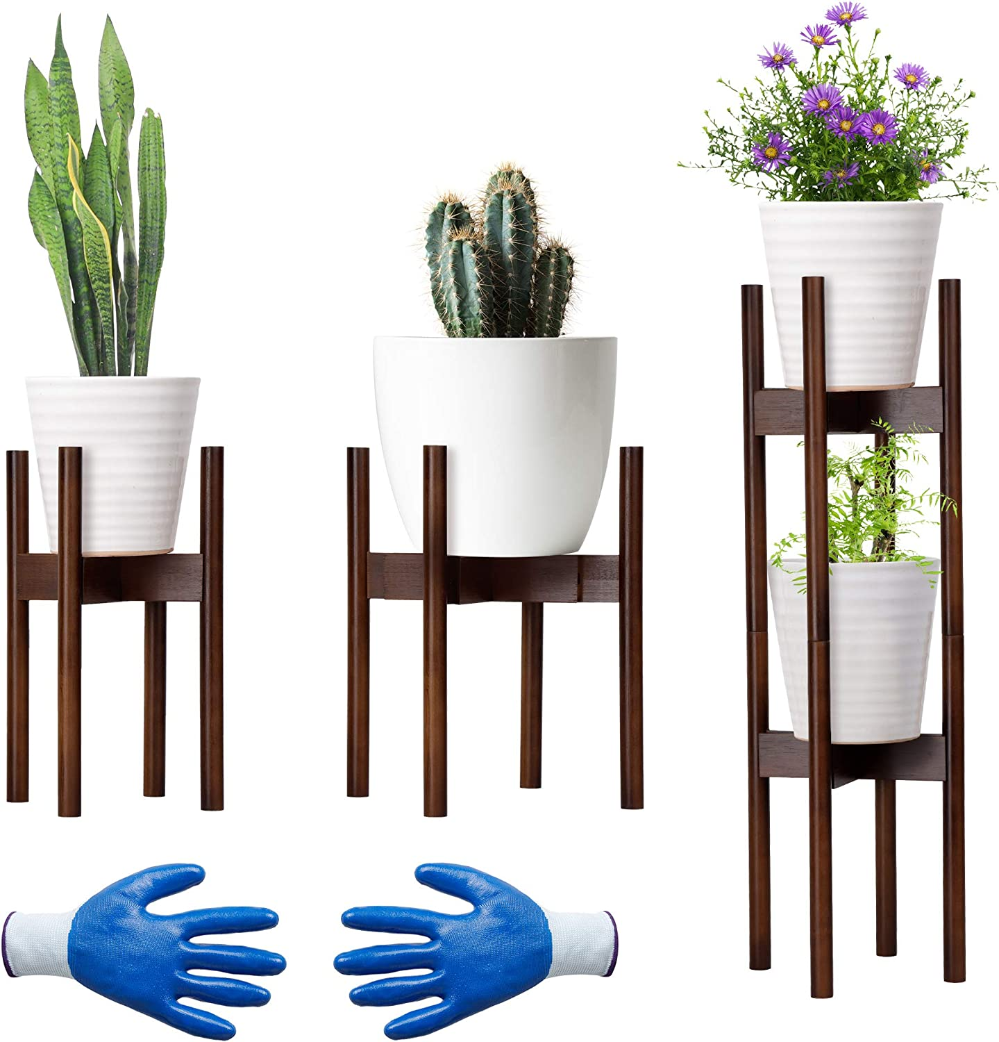 Mid-Century Modern Bamboo Plant with Stands Gardening Popular low-pricing brand in the world Gloves