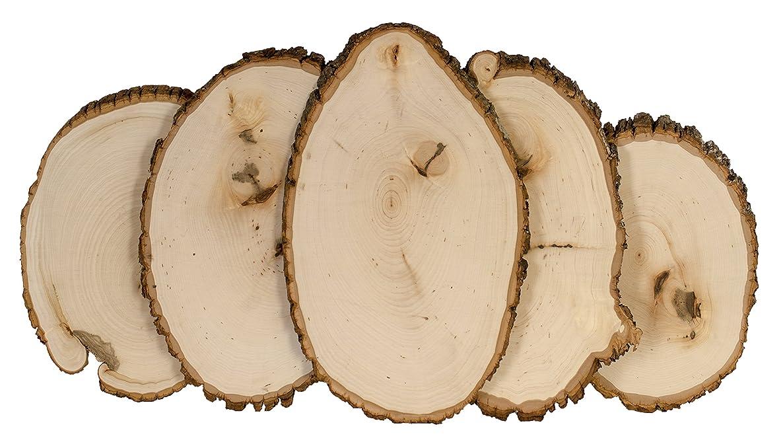 Walnut Hollow 42260 Rustic Basswood Round, Medium 12-pc Bulk Value Pack Wood Slices, Bark, Live Edge