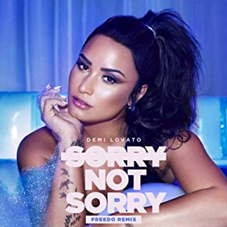 Sorry Not Sorry [Clean] (Freedo Remix)