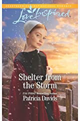 Shelter from the Storm: A Fresh-Start Family Romance (North Country Amish Book 1) Kindle Edition